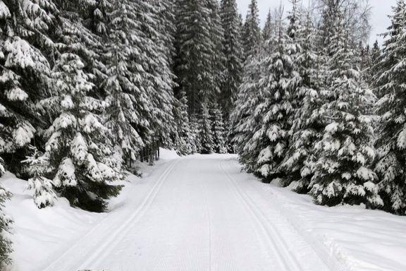 Det er bare gater i Oslo sentrum. Men ikke langt unna finner du finfint skiføre.