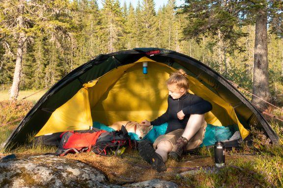 Fem gode råd for et vellykket teltkjøp: – Ikke kjøp for dyrt telt