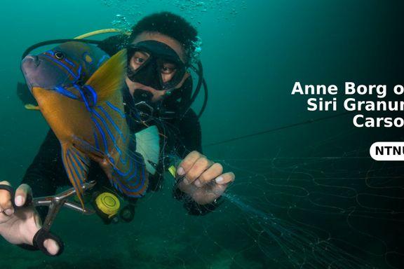 Spøkelsesfiske er en spesielt farlig form for plastforurensning