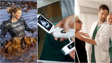 Hva skal Norge leve av i fremtiden? Her er seks næringer forskerne har troen på.