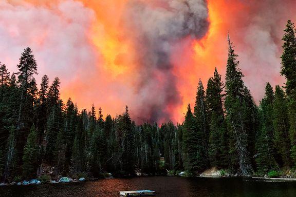 California erklærer unntakstilstand på grunn av skogbranner