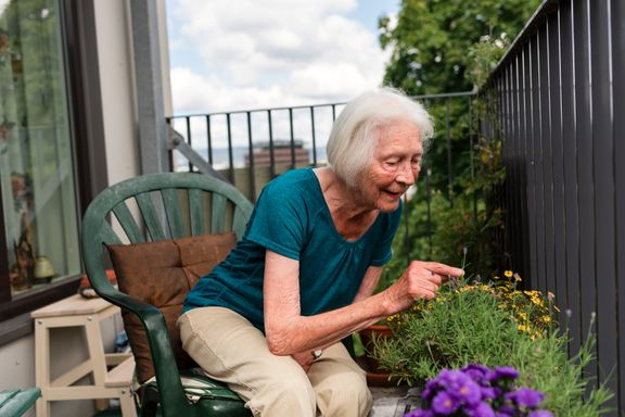 Suksessforfatter (90): - Nye frø kan ødelegge livet for Oslos plantearter