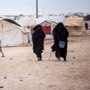 Danmark vil hente hjem mødre og 19 barn fra Syria