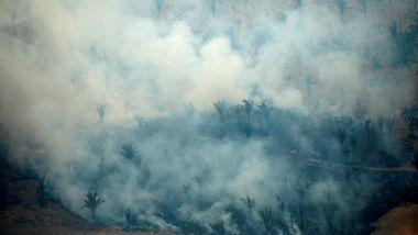 Brannene kryper inn i urfolksreservatene. Her vil Bolsonaro drive landbruk og gruvedrift.