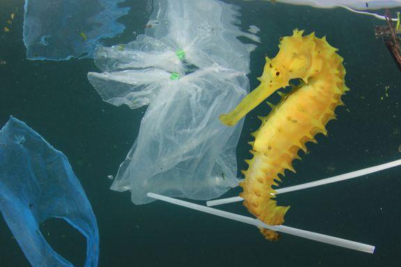 Ny global plast-avtale vedtatt på rekordtid. Nå skal verden håndtere plast på norsk måte.