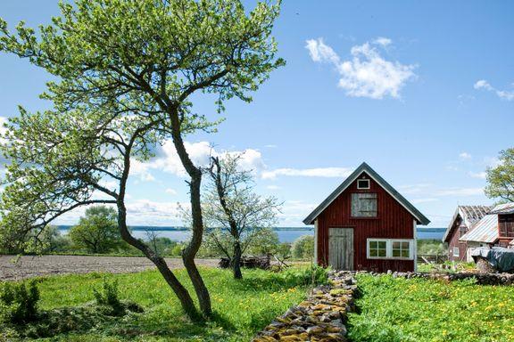 Har du ikke bodd i en «rød stuga» ennå? Reis til en av Sveriges mest kjente fugleinnsjøer og nyt roen.