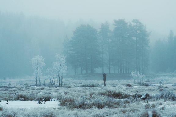 Bjørn i siktet er ikke hverdagskost. Men på søndagstur ved Sørlimyra i Østmarka går alt an.