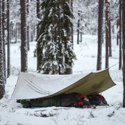 Du trenger ikke telt for å sove ute i skogen. Det er ofte best uten.