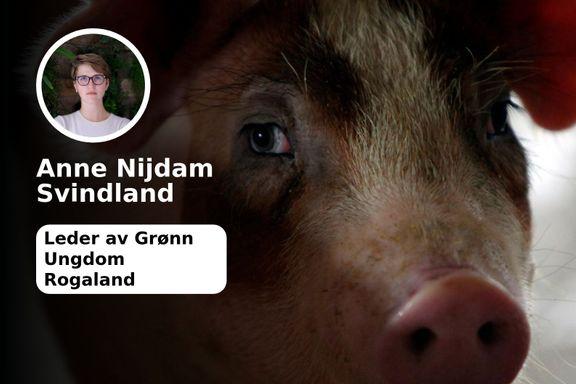 Det er på tide å tenke over hva slags grisehold som er etisk forsvarlig
