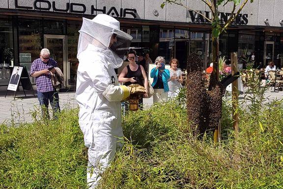 15.000 bier tok seg en tur til Oslo sentrum. Det endte med karantene.