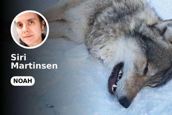 Aksepterer Nationen faunakriminalitet?
