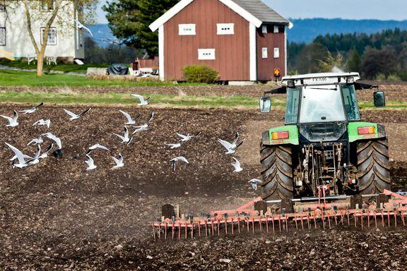 Fire gale påstander om økologisk landbruk   Bjørn Lomborg