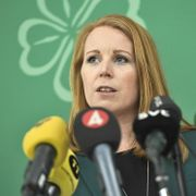 Sverige: Centerpartiet og Liberalerna støtter regjering med Löfven