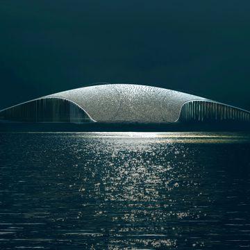 Planlagt hvalsenter tar verden med storm: «En fantastisk kreasjon»