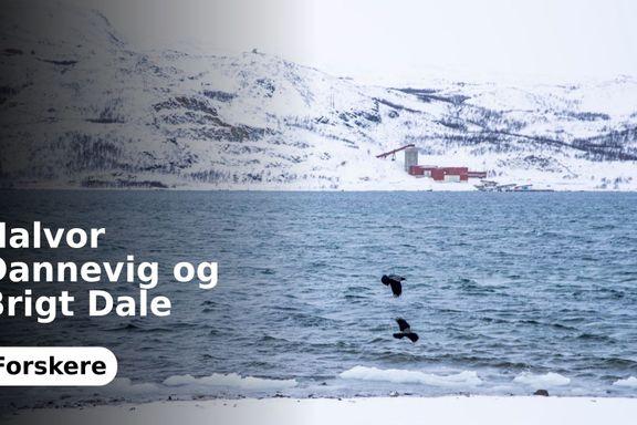 Ja til konsekvensutredning var ja til gruve og fjorddeponi