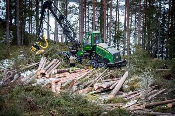 Norge vil produsere biodrivstoff fra skogsavfall. Ingen i verden gjør det i dag.