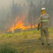 1000 brannfolk kjemper mot brann i Portugal. En mann pågrepet.