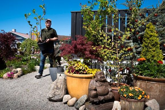 Åsbjørn Kvame forvandlet hagen til en grønn oase