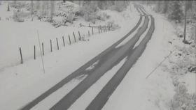 Meteorologene advarer om mye snø på Østlandet