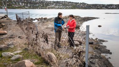 Slik skal strandsonen i Oslofjorden gjøres mer tilgjengelig
