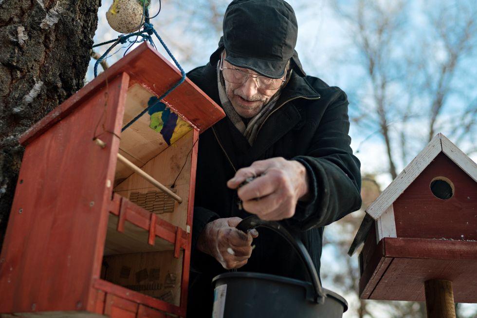 Rekordmange teller hagefugler: Petter Emil Steen (91) har full kontroll fra kjøkkenvinduet