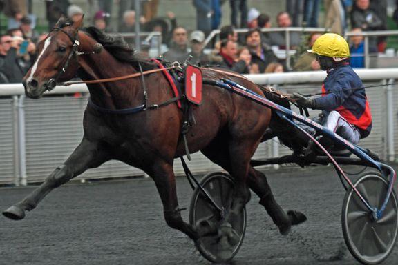 Norsk hest nær sjokkseier i verdens hardeste travløp