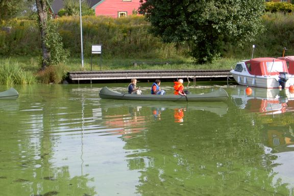 Det grønne skiftet kan gi oss grønt vann