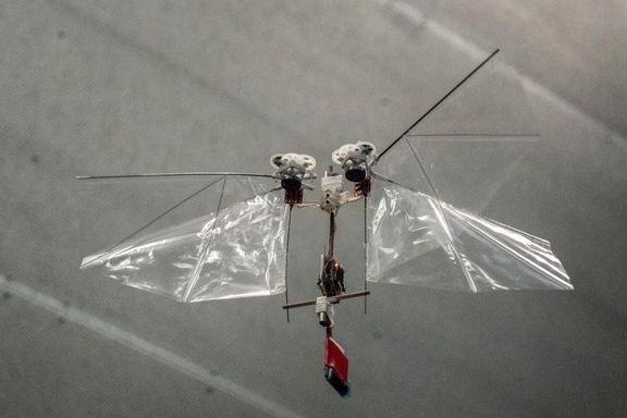 Nå kommer robotbiene. Kan de redde oss?