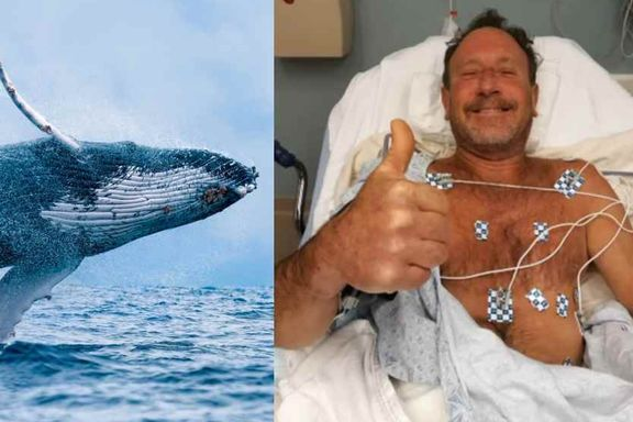 -  Oh my God! Jeg er i munnen på en hval, og han prøver å svelge meg!