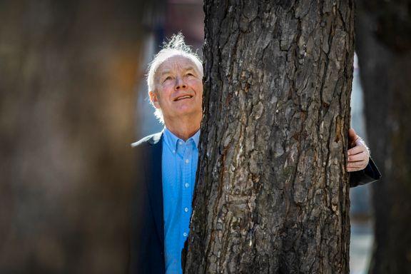 Lundteigen ut mot naturvernene: De sammenligner hugging av tre med drap på et menneske