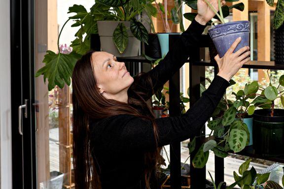 Planter har tatt over boliger og sosiale medier. På nettet selges de for tusenvis av kroner.