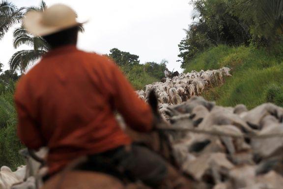 DNV GL ut mot verdens største kjøttprodusent for å misbruke deres rapporter