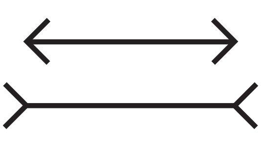 Er du som de aller fleste mennesker, tar du instinktivt for gitt at den nederste streken er lenger enn den nederste?