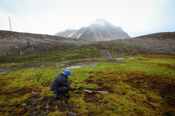 Hva skjer når permafrosten forsvinner?