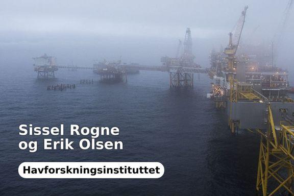 Avsporing om oljeuhell og økosystemer