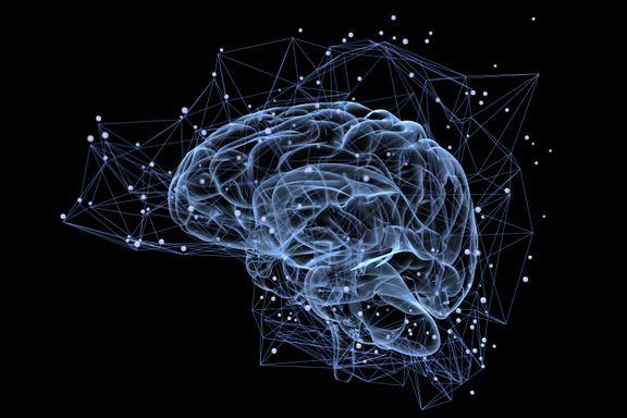 Kunstige hjerner bør innhentes av lovens lange arm