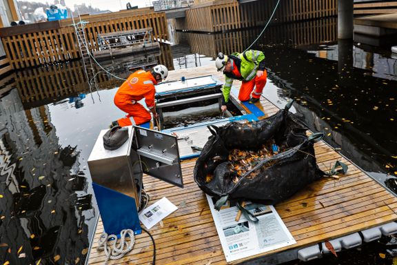 Plast, løv og annet skrot suges opp fra sjøen med denne maskinen