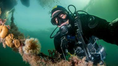 Under et av sine mange fridykk, oppdaget Erling (65) plutselig noe nytt på havets bunn
