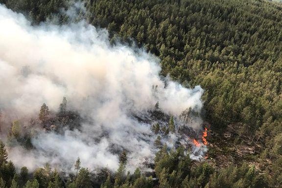 Sivilforsvar og to helikoptre satt inn mot skogbrann i Østfold