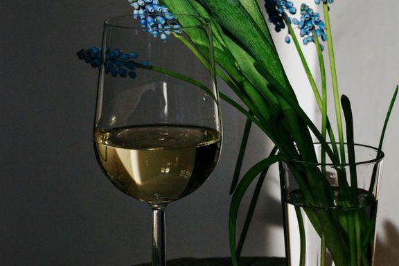 Lei av vinteren? Her er vinene som lokker frem våren.