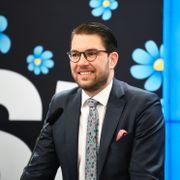 Ny rekord for Sverigedemokraterna: 25 prosent og Sveriges største parti for andre måned på rad