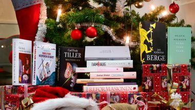Trenger du julegavetips? Her er årets beste bøker.