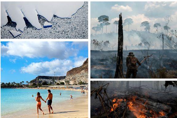 Test klimakalkulatoren: Se hvor mye reisen din koster miljøet