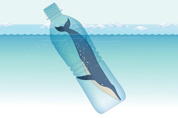 Hver uke spiser vi 2000 små plastbiter. Millioner av fugler og hvaler dør fordi de spiser plast.