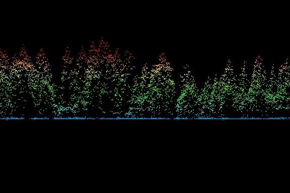 Med flyvende laser finner forskere Norges eldste skoger
