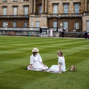 Dronning Elizabeth lar folk ha piknik på plenen hennes