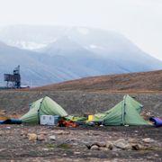 Nederlandsk ansatt på campingplassen døde etter isbjørnangrep på Svalbard