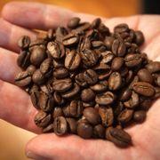 Kaffeprisene fortsetter kraftig opp: – En ny normal