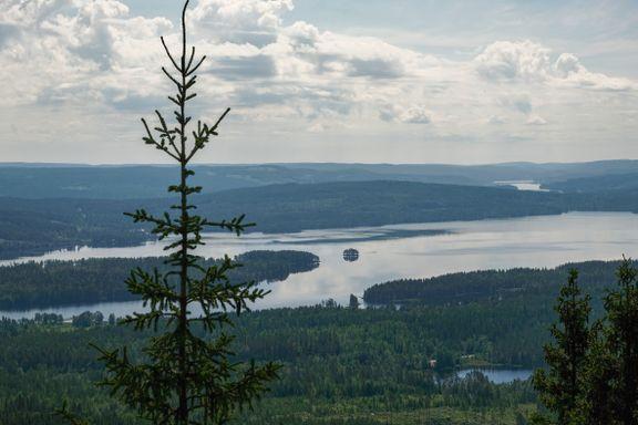 Finnskogrunden er blitt en populær tur. Vi gikk hele den trolske skogsturen.