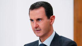 OPCW anklager Syria for kjemiske angrep i 2017